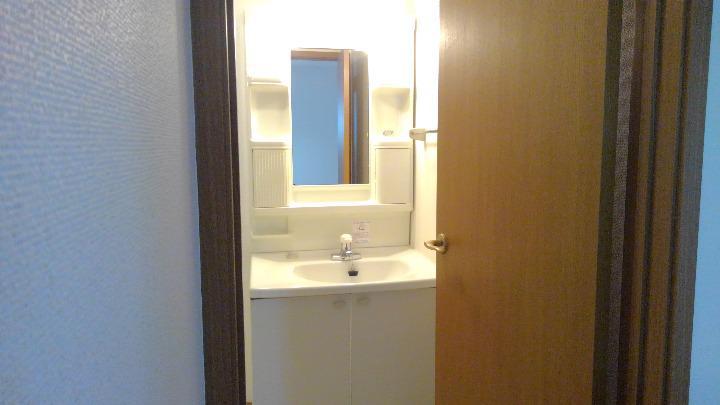 ラフィーネイズミ 02030号室の洗面所