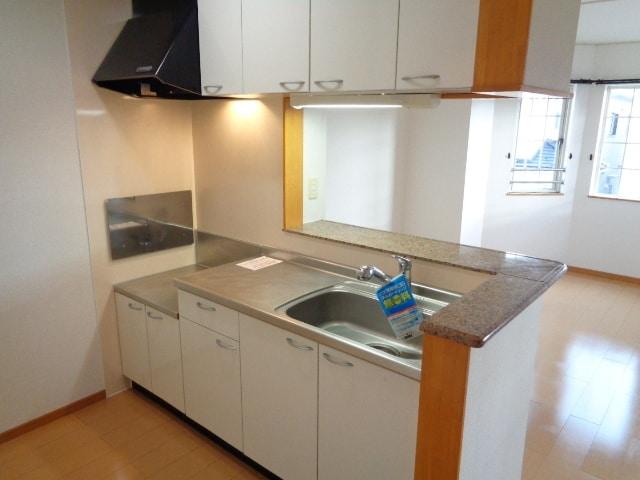 ピクシー・ラビットA 02040号室のキッチン