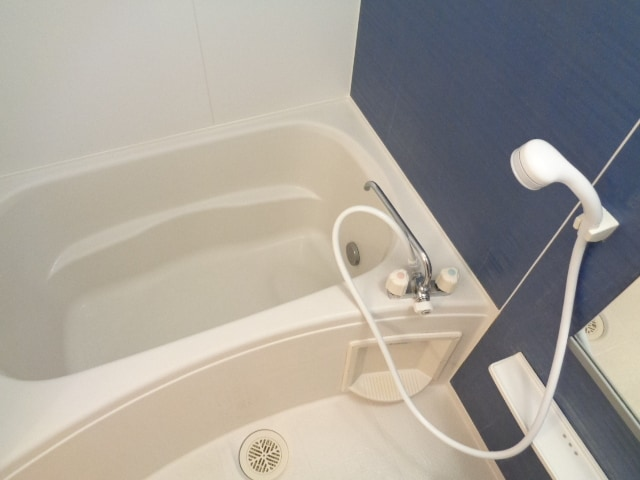 ピクシー・ラビットA 02040号室の風呂