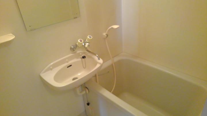 エルディム長谷川Ⅰ 01010号室の風呂