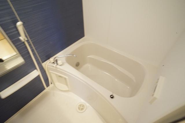 セントポーリアⅡ 01010号室の風呂