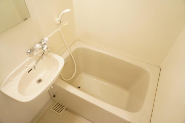 ヴェラムサシ 02020号室の風呂