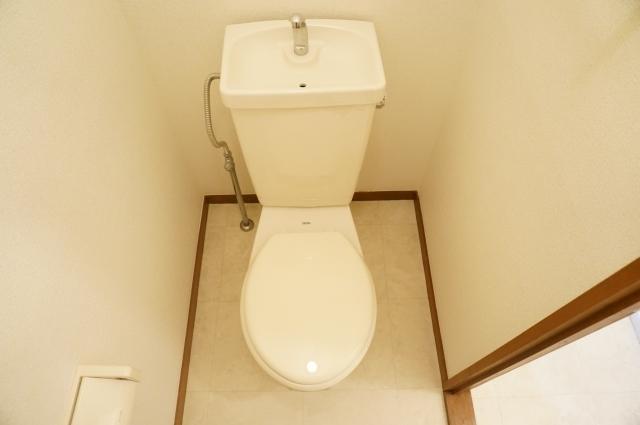 ヴェラムサシ 02020号室のトイレ