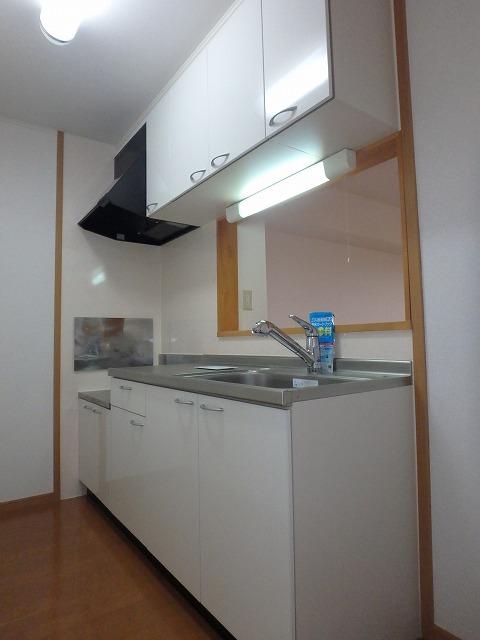 フォンティーヌB 02020号室のキッチン
