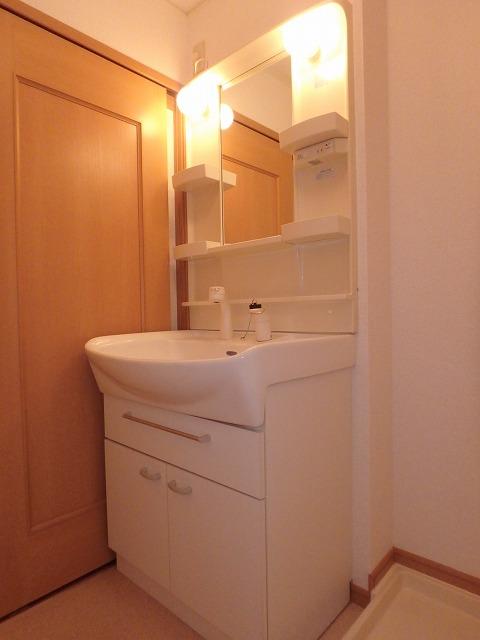 フォンティーヌB 02020号室の洗面所
