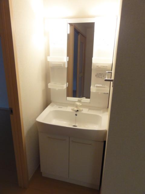 ファミール井上Ⅱ 01010号室の洗面所