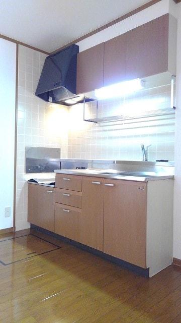 グリーン・ミヌマ 01010号室のキッチン