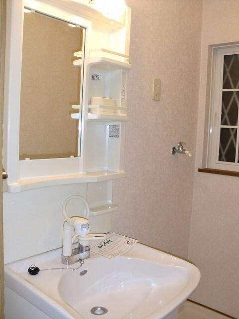 グリーン・ミヌマ 01010号室の洗面所