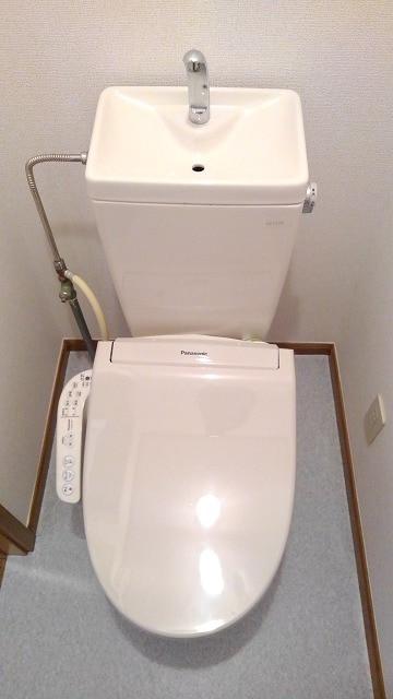 グリーン・ミヌマ 01010号室のトイレ