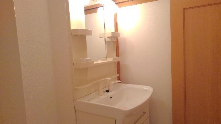 セレニテ 02010号室の洗面所
