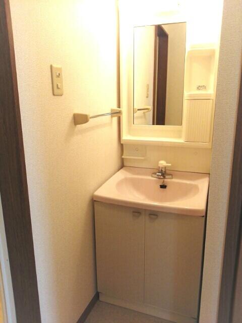 ハイパーク 01010号室の洗面所