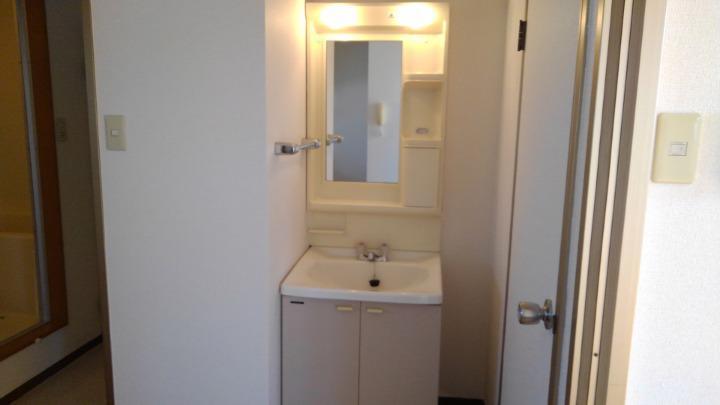 エルみなみ1 02020号室の洗面所
