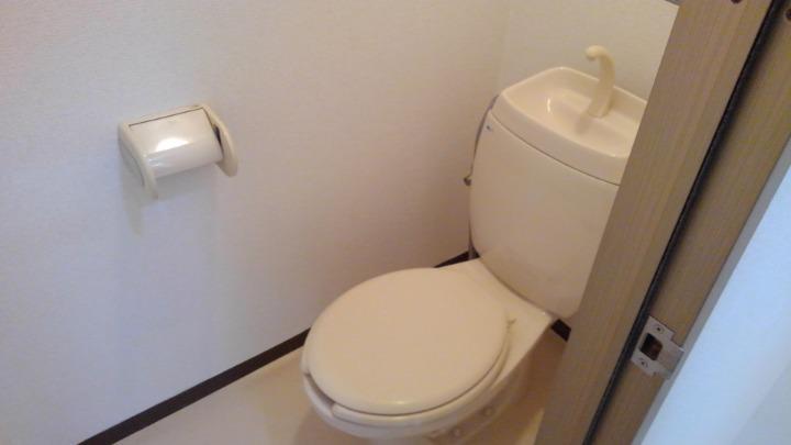 エルみなみ1 02020号室のトイレ