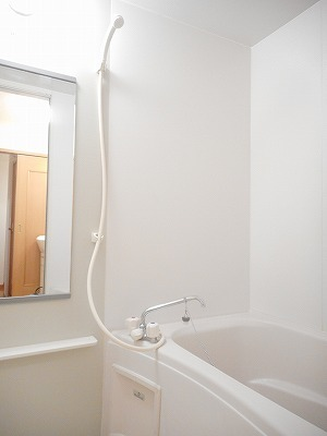 サンリットA 02010号室の風呂