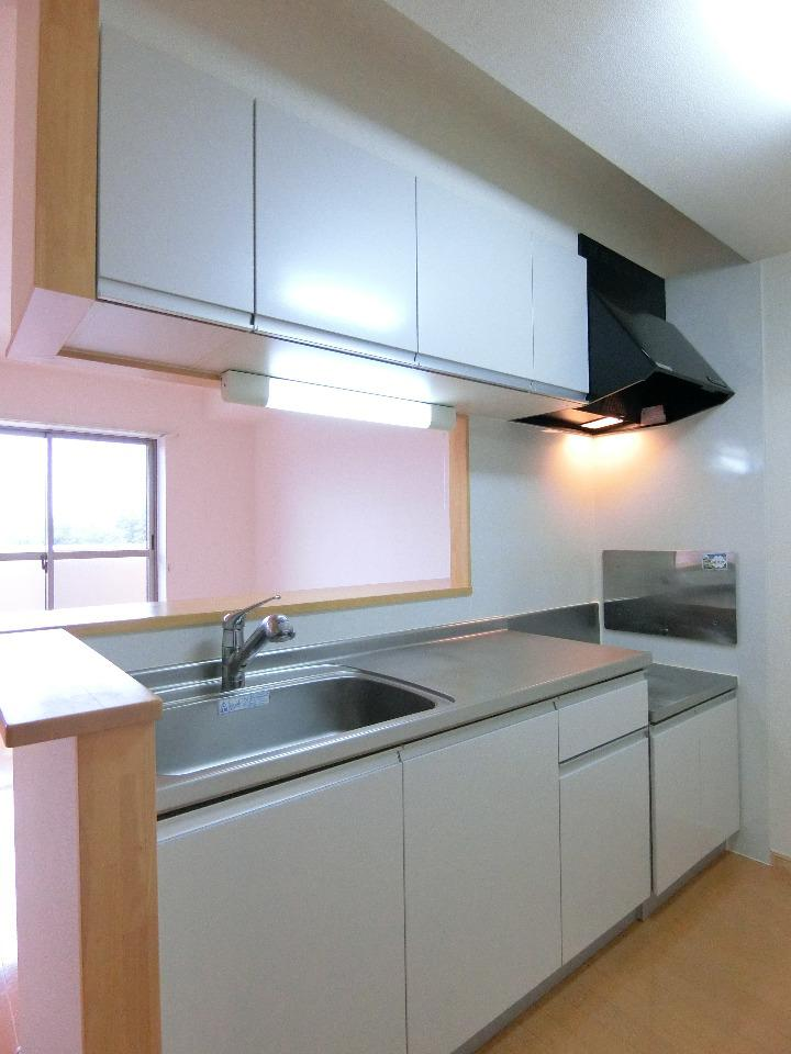 ランデュール城西 02010号室のキッチン