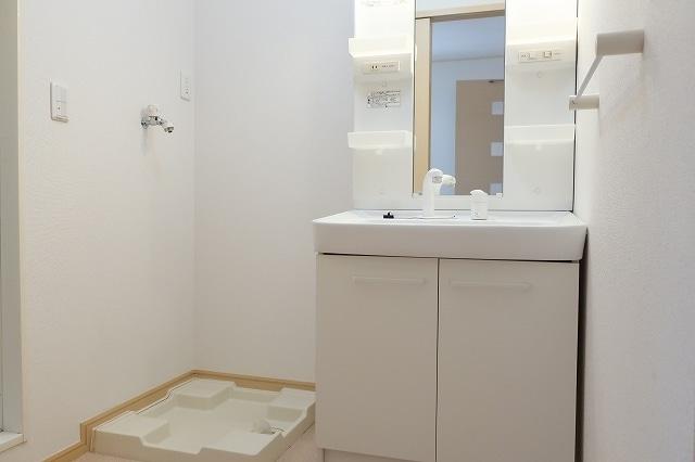 サニ- スプリング B 01010号室の洗面所