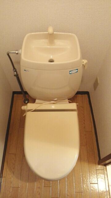 グリーンハイツA 01030号室のトイレ