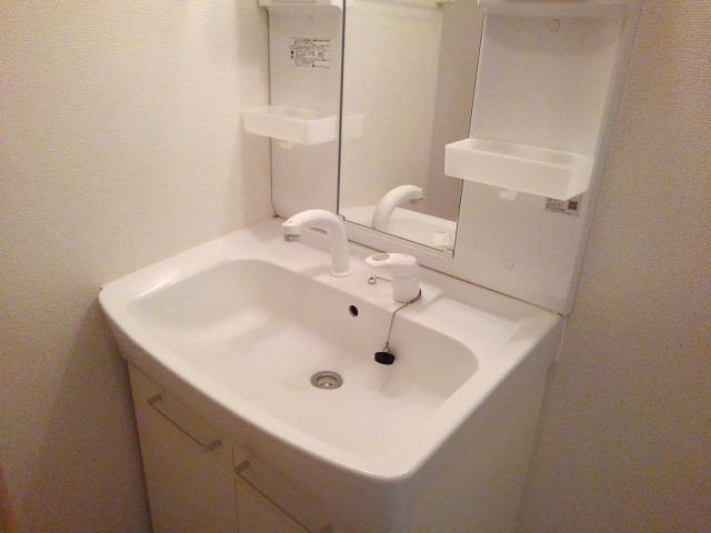 ルピナス・グロー 01040号室の洗面所