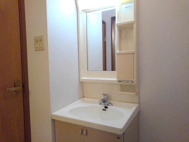 ヴィラ星の宮 01020号室の洗面所