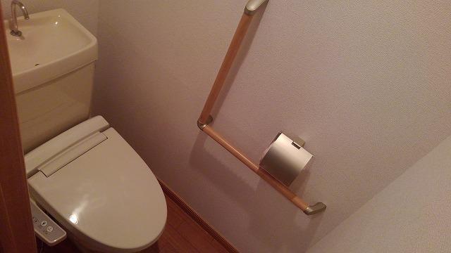 カーサフェリス高町 01010号室のトイレ