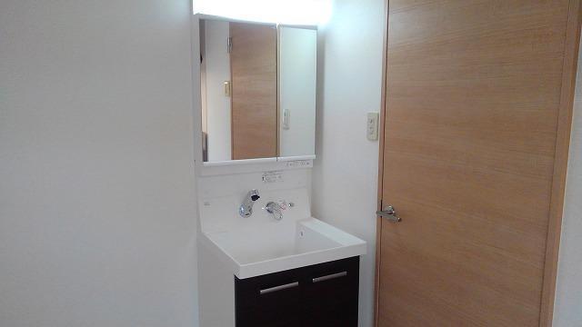 カーサフェリス高町 01010号室の洗面所