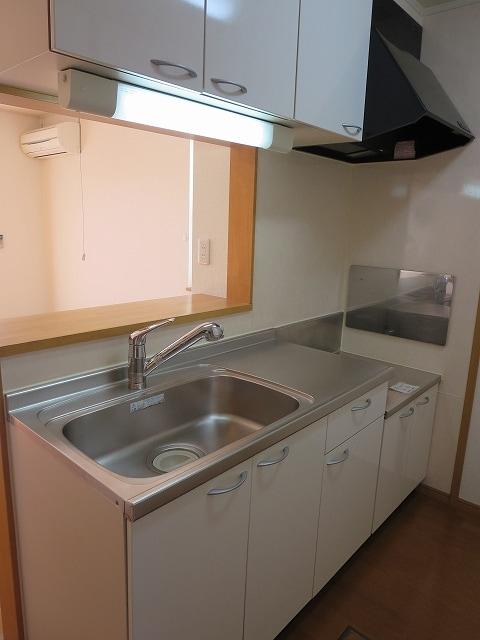 サン・フィオーレ Ⅰ 01010号室のキッチン