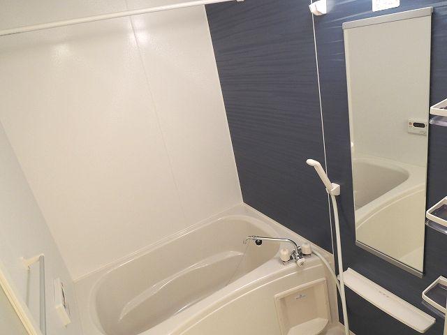 サンライズグリーンパーク 01030号室の風呂