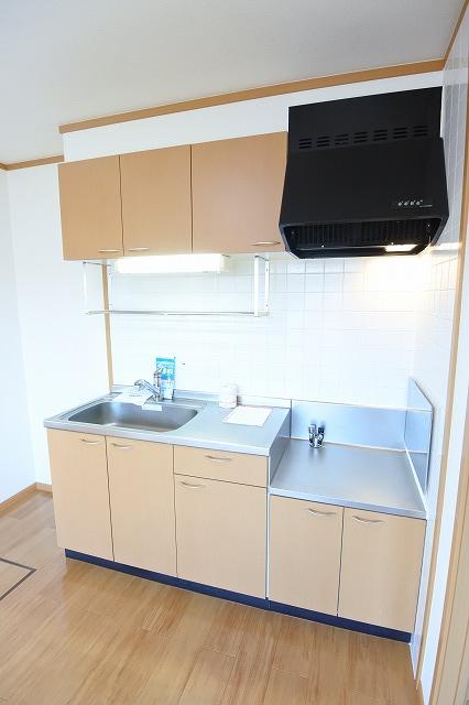 エアリーハウス 01010号室のキッチン