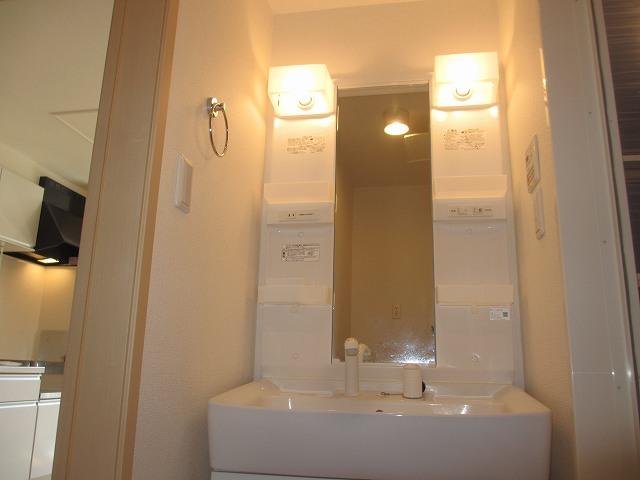 ヒルサイドハウスⅠ 01020号室の洗面所
