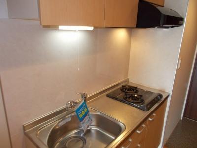 広尾ビューヒルズ 05020号室のキッチン
