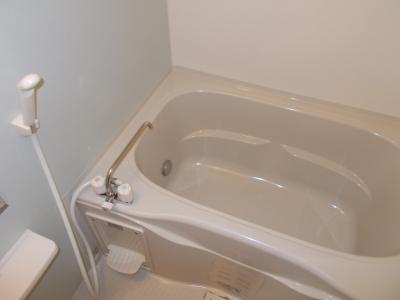 広尾ビューヒルズ 05020号室の風呂