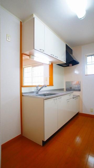 プラティ-クⅠ 02010号室のキッチン