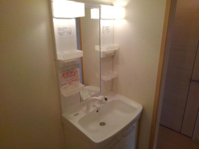 ブランミュールD 01030号室の洗面所