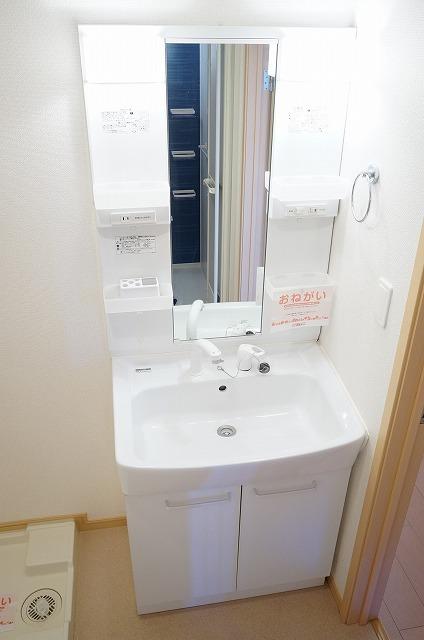 グレイスフル・M 02030号室の洗面所