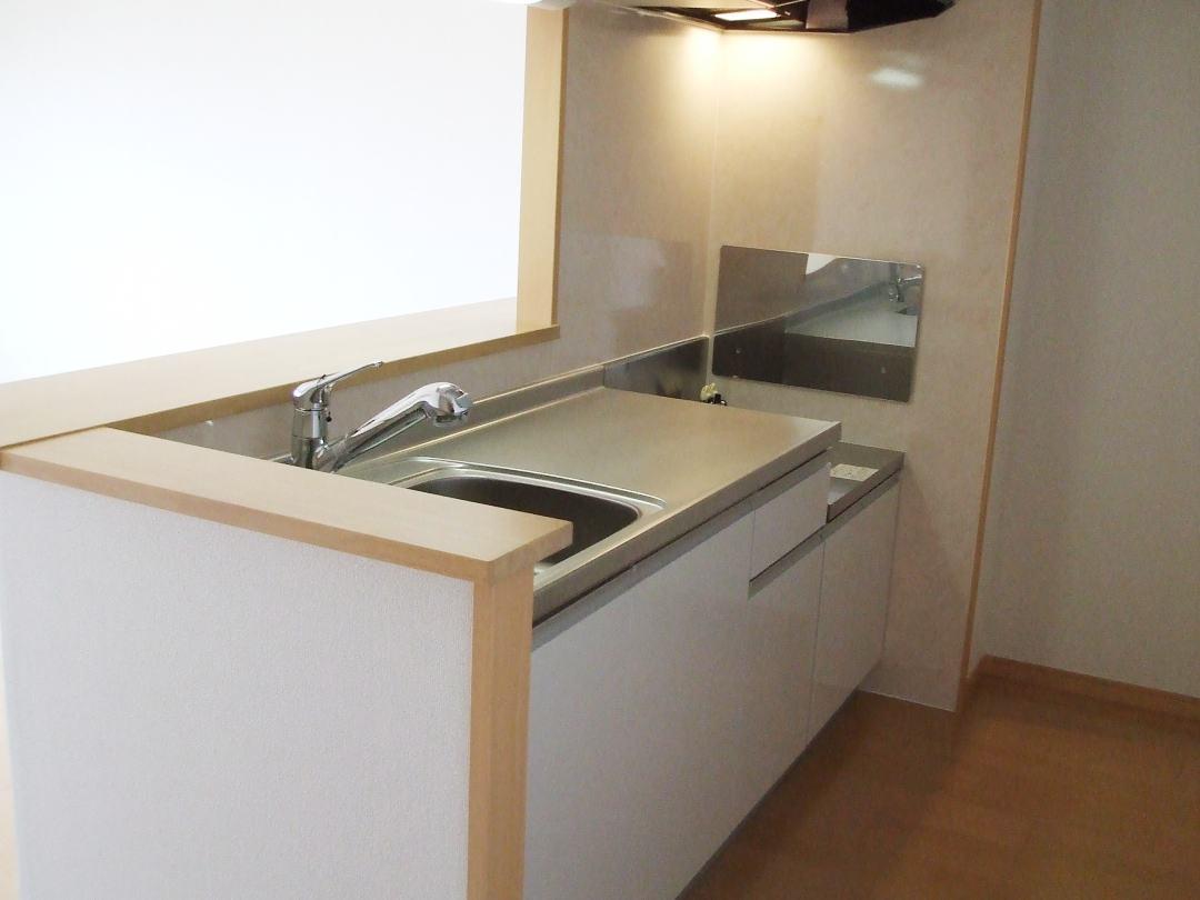 ボニート春日部 04030号室のキッチン