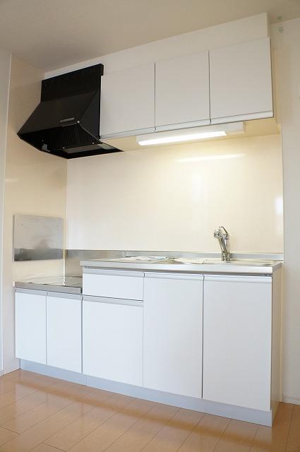 ビラ・シャルル 02010号室のキッチン