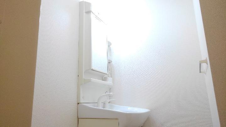 メゾンシャルマン 03010号室の洗面所