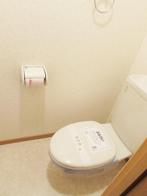 シャン・ド・フル-ル 06100号室のトイレ