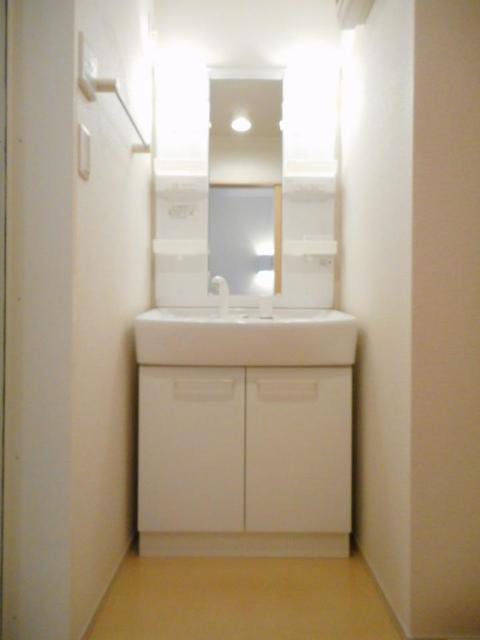 グレイス・パークB 02010号室の洗面所