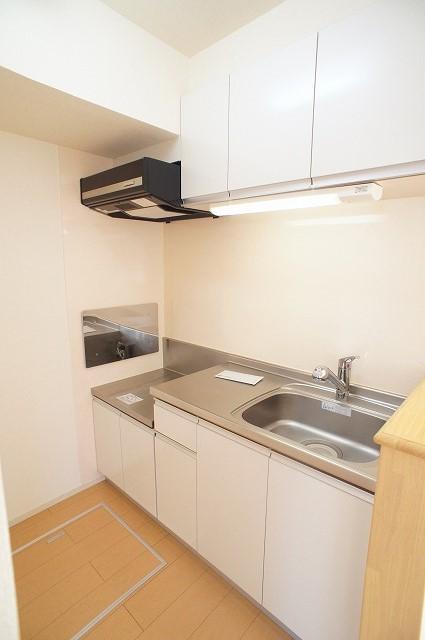 エピナール 01010号室のキッチン