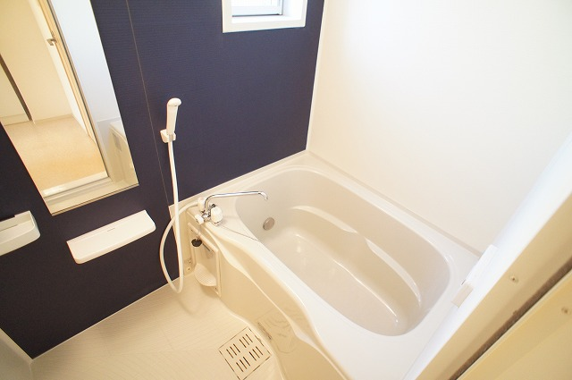 エピナール 01010号室の風呂