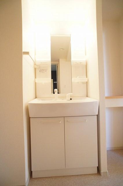 エピナール 01010号室の洗面所