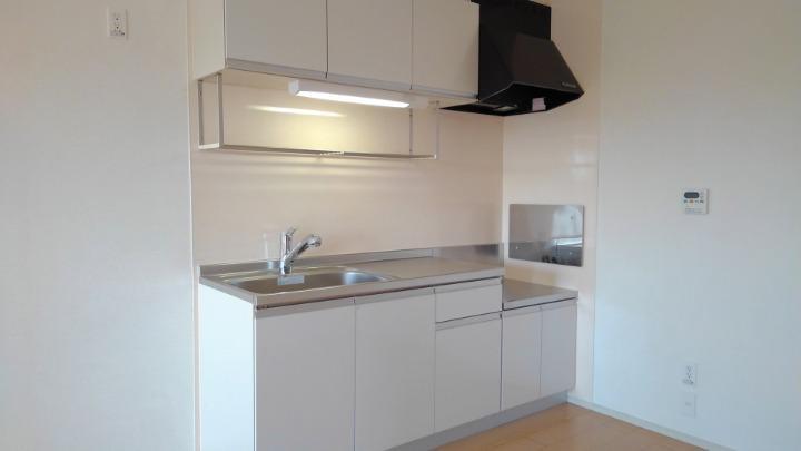 ビバリーヒルズT&Y 02010号室のキッチン