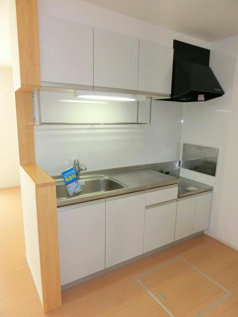アウローラ 01020号室のキッチン