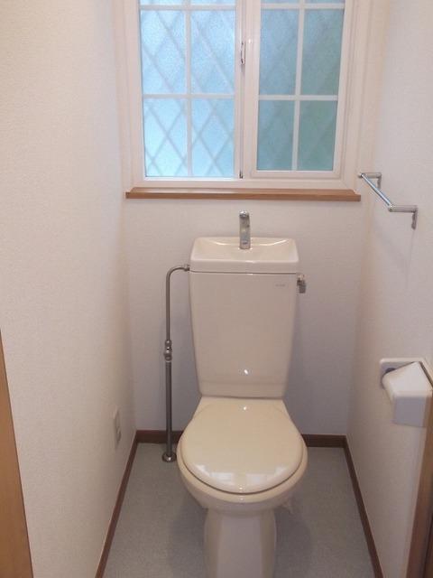 オーキッドヒル・Aのトイレ