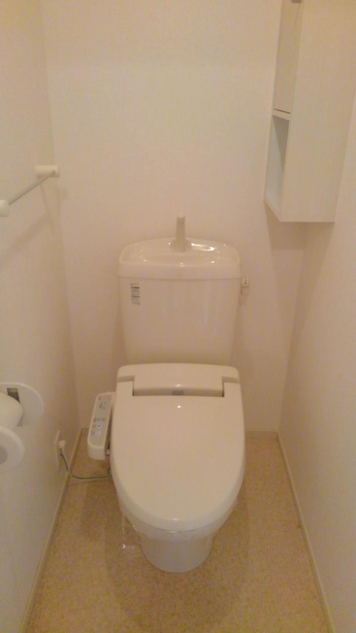 プラシードⅢ番館 02030号室のトイレ
