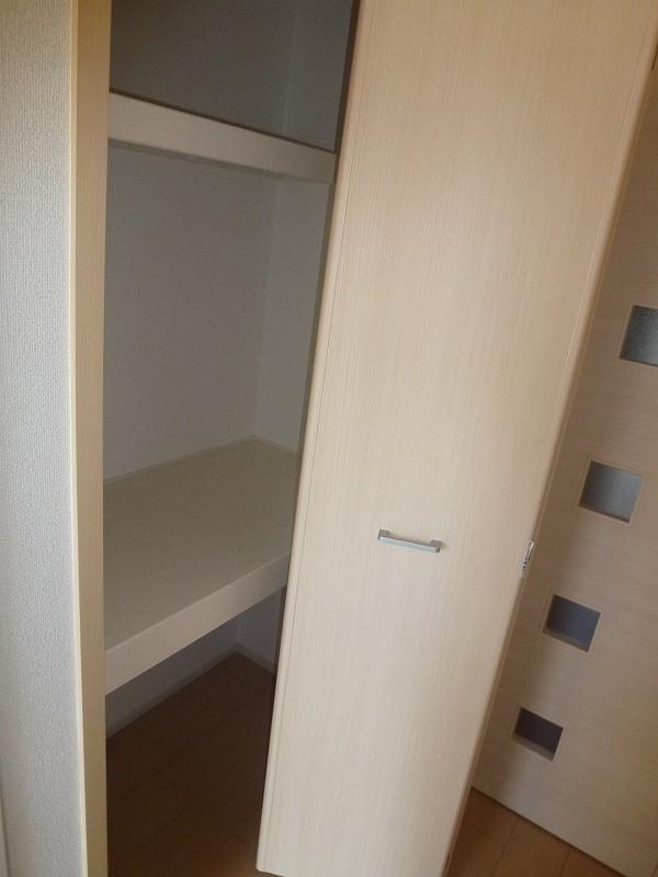ピエール・アベニュー 01040号室の収納