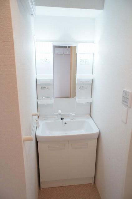 太陽 01010号室の洗面所
