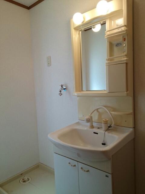 ニュー・ミヤビ 01020号室の洗面所