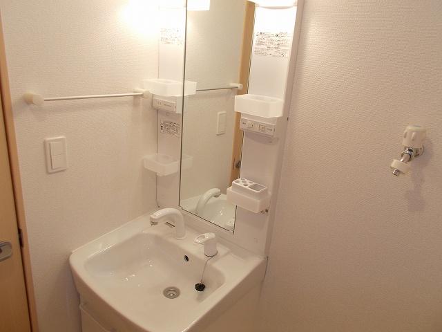 ラ・ヴィータ下馬 03010号室の洗面所
